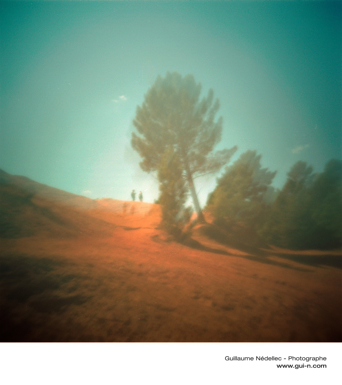 paysage stenope holga pinehole